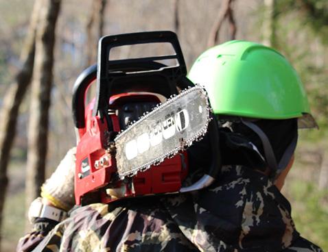 画像:林業用品